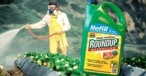 THS_June_12_03_Monsanto_roundup-798x418