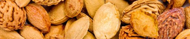 les amendes amères d'abricots détruisent les cellules tumorales ??
