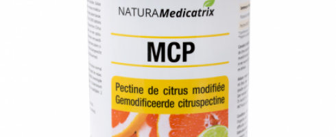 la pectine de citron modifiée ( MCP )