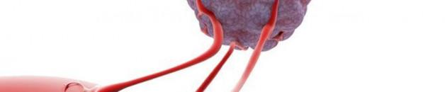 oxygène et lutte contre le cancer