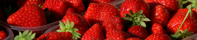 plutôt des fraises BIO…