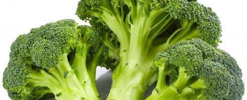 Le sulphoraphane, extrait du brocoli, inhibe les cellules souches du cancer du sein