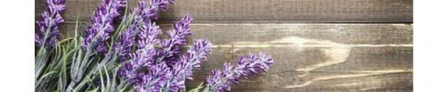 Médecine des plantes : dans le viseur des autorités